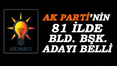 AK Parti 81 İl Bld. Bşk. Adayını Belirledi