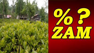 Yaş Çay Taban Fiyatı Yüzde Kaç Zamla Belirlendi?