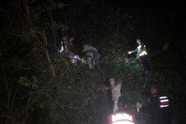 Kestikleri Ağacın Altında Kalan Karı Koca Öldü