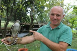 Artvin'de Atmaca Avcılığı Babadan Oğula Yaşatılıyor