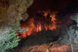 Ardeşen'de Orman Yangını - Yine Aynı Yer...
