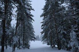 Kafkasör Yaylası'nda Kış Bir Başka Güzel