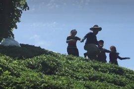 Rize'de 5 Kuzen Çay Arası Horon Oynadı