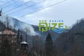 Ardeşen'de Orman Yangını - İşte İlk Fotolar