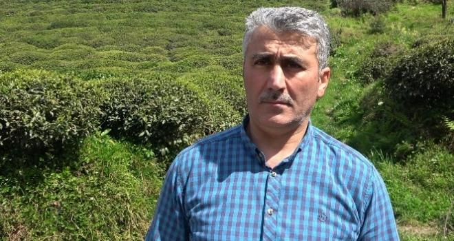 Çay Üreticileri Derneğinin Fiyat Beklentisi
