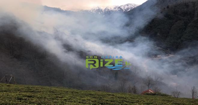 Orman Bakanı: Yangınlar Kontrol Altına Alındı
