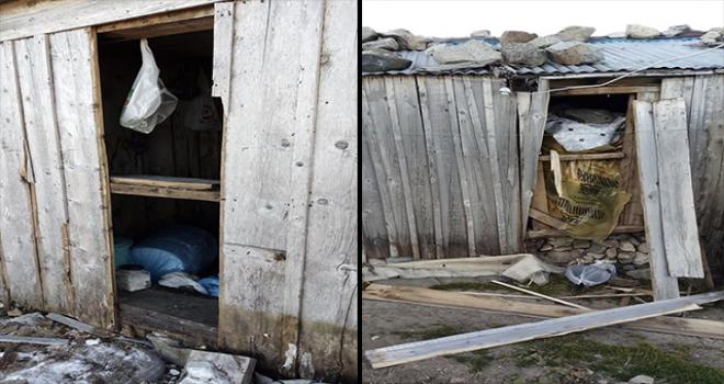 Tarkan'ın Yaylasında Bulunan Evlere Ayı Saldırdı