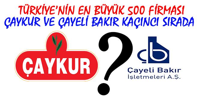 Türkiye'nin En Büyük 500 Firması Açıklandı