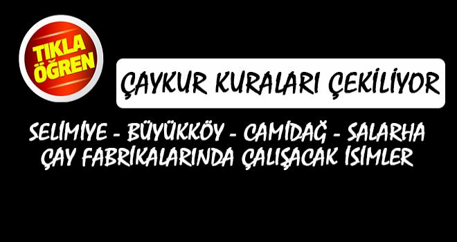 Selimiye, Büyükköy, Camidağ, Salarha Sonuçları