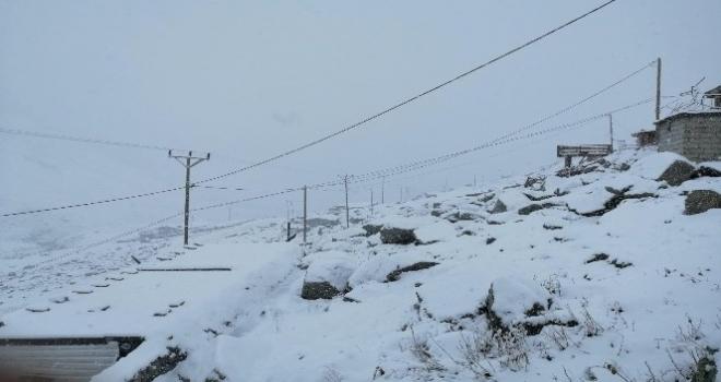 Kar Rize'nin Yaylalarını Beyaza Bürüdü