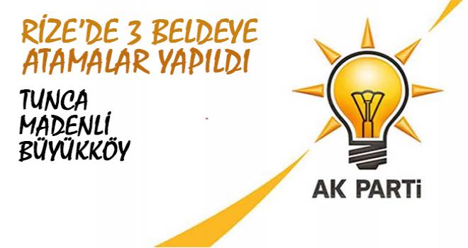 AK Parti Rize'de 3 Beldeye Başkan Atadı
