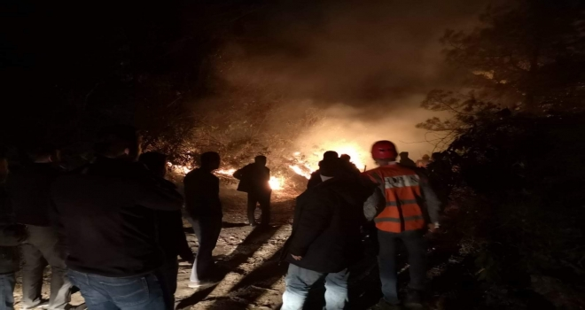 Arhavi Ciha Tepesi'nde Orman Yangını
