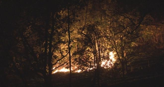 Rize'de Orman Yangını... Yerleşim Yerleri..?